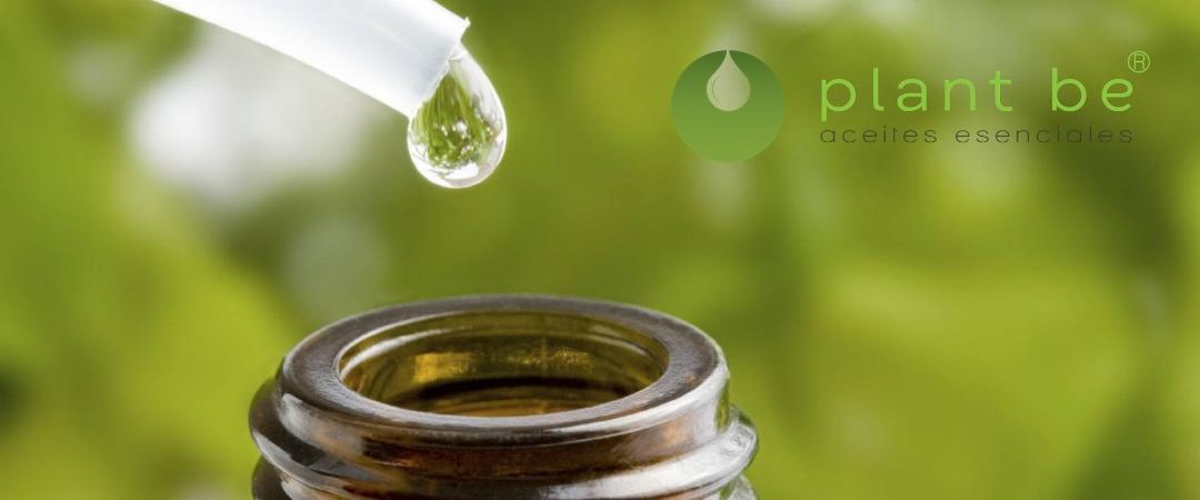 ¿Cómo usar los aceites esenciales?