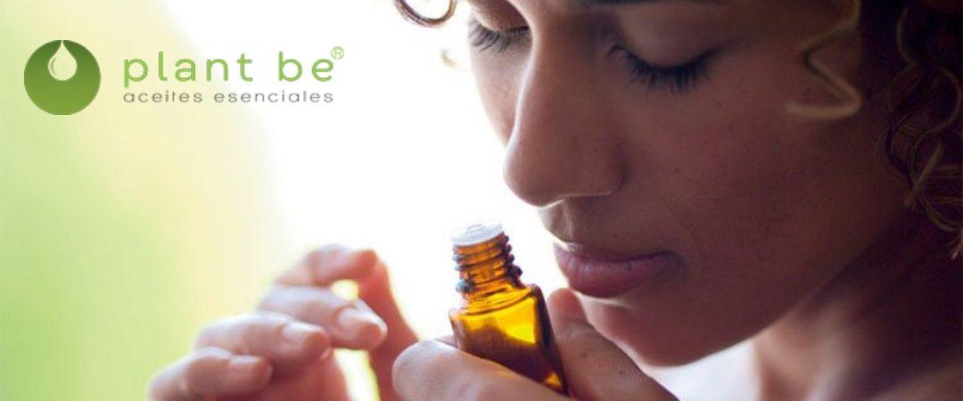 ¿Sabes cómo usar los aceites esenciales para respirar sano?